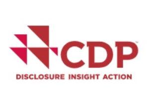 CDP Awards 2019 - 2020