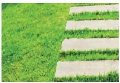 pavimentazioni permeabili